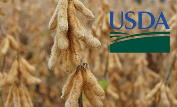 Detalle de las expectativas en la previa al USDA.