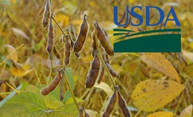 Primeros datos del USDA de marzo.