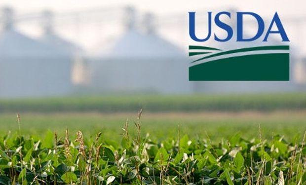 Informe extendido del USDA - Junio.