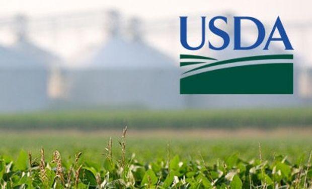 El mercado reaccionó con fuertes subas para soja y trigo ante los datos del USDA.