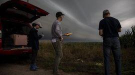 USDA: podría haber nuevas sorpresas para el precio de la soja y el maíz