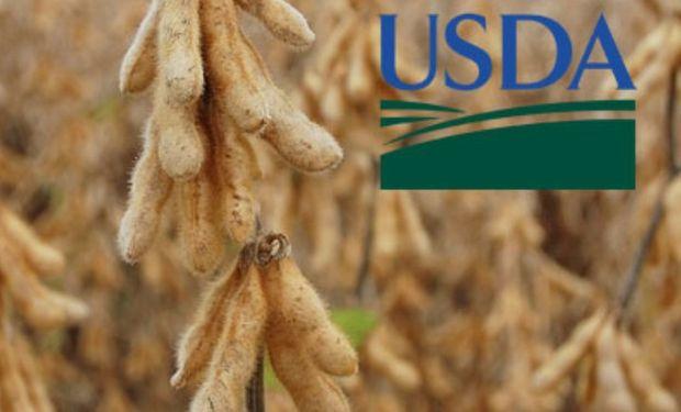 Datos bajistas del USDA presionan al mercado.