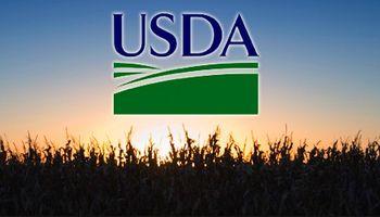 ¿Cuáles son las expectativas en la previa al informe del USDA?