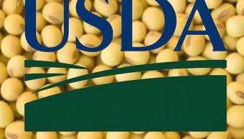 Rumbo al reporte del USDA: expectativa por un dato clave