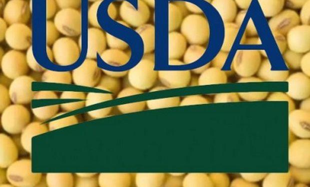 Gran expectativa para el reporte del USDA.