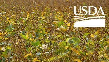 Expectativa por el Foro Anual del USDA