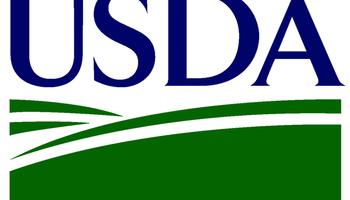 ¿Qué nos depara un nuevo informe del USDA?