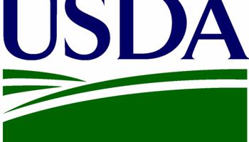En la previa del USDA, ¿qué expectativas hay?