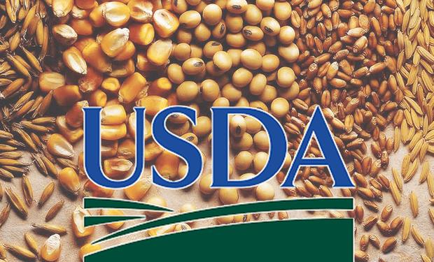 El USDA reveló las estimaciones de noviembre.
