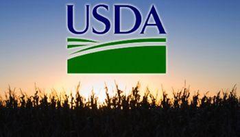 El reporte USDA llegó con datos que sorprenden al mercado