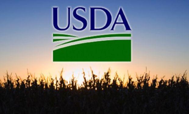 Primeros datos del USDA de febrero.