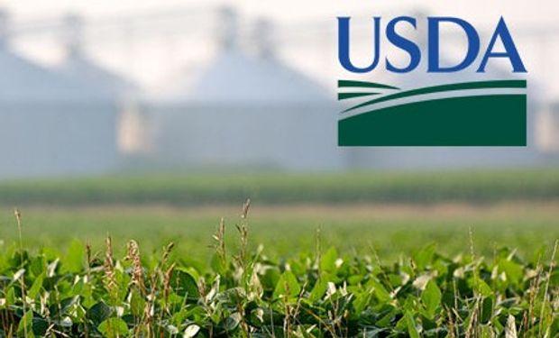 USDA: pocos ajustes pero con bajas en el mercado.