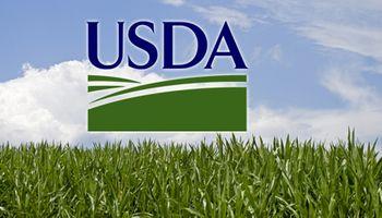 Primeros datos del USDA: despega la soja en CBOT