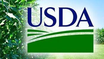 USDA: primeros datos logran revertir las pérdidas iniciales