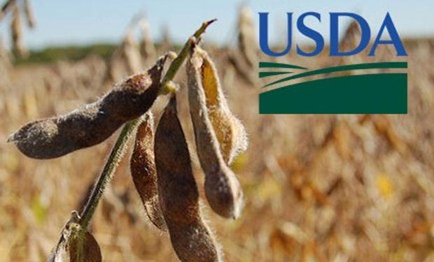 Primeros datos del USDA de agosto.