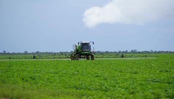 Marcha atrás para una prohibición en el uso de agroquímicos