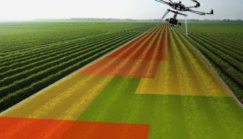 Agrodatos: la próxima frontera de la productividad en el campo