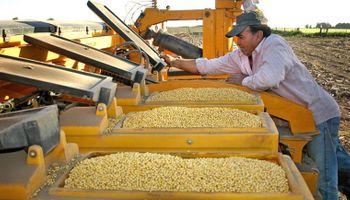 Cierran aun más el cerco al uso ilegal de semillas de soja