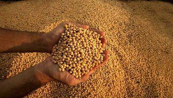 En la última semana se vendieron más de un millón de toneladas de soja