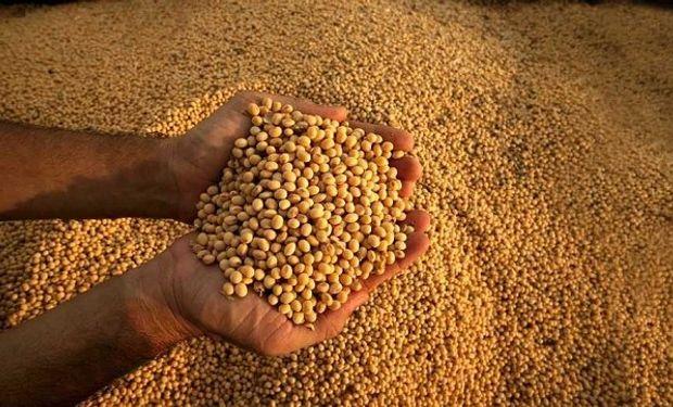 La soja se comercializa a buen ritmo.