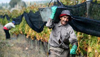 Piden priorizar a los trabajadores rurales mayores de 60 años en la vacunación contra el coronavirus