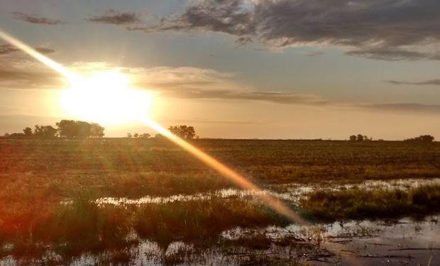 Para Di Bella, el cambio climático no es el responsable de lo que le ocurre a los sistemas de producción agropecuaria.