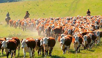 Venta de campos: con la reapertura de fronteras, Uruguay se prepara para la llegada de inversores argentinos