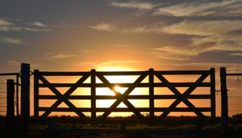 Inmobiliarias rurales estiman que en 2016 se venderá más y a mayor precio