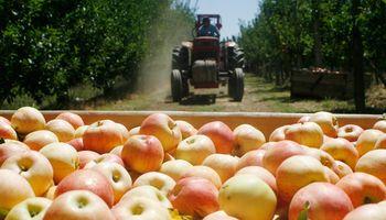 Se profundiza la crisis del sector frutícola