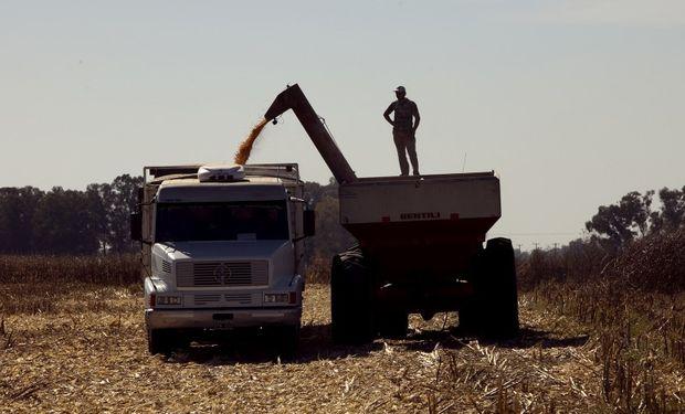 Obligan a productores a vender la cosecha para acceder a créditos