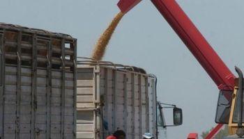 Una nueva herramienta busca agilizar la compraventa de granos