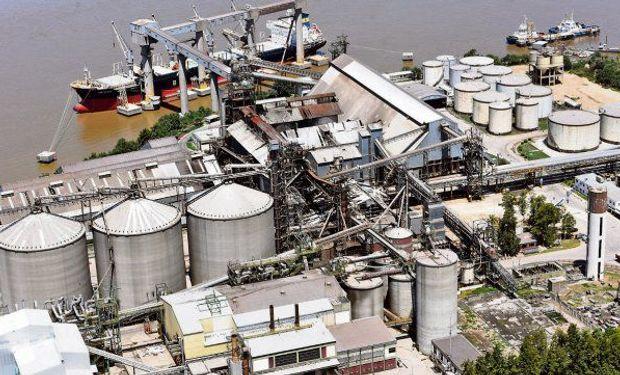 """Se demora la venta de soja y la industria asegura que """"la menor rentabilidad dificulta la posibilidad de mejorar los precios"""""""