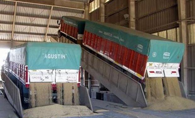 Datos del Ministerio de Agricultura muestran que entre el 11 y 25 de marzo pasado, se negociaron 680.000 toneladas de porotos.