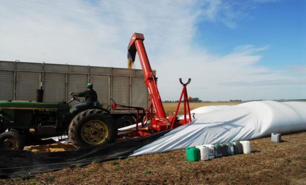 Productores de soja vendieron un 48% de la cosecha.