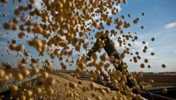 El nuevo Gobierno esperaba más ventas de soja por parte de los productores