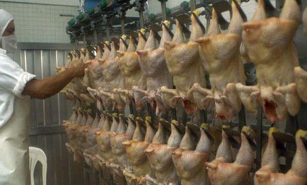 Brasileños dedicados a la carne aviar exportaron en diciembre de 2015 un total de 399.000 toneladas.