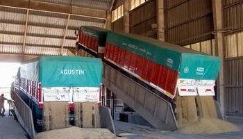 Se comercializó el 64,56% de la producción de soja 2014/15