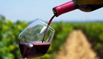 Por los altos precios, se derrumba el consumo y la exportación de vino