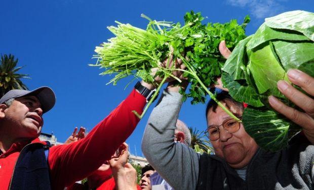 """Pequeños productores se reunen en Plaza de Mayo donde hacen un """"Feriazo"""" vendiendo mas de 20 mil kilos de verduras."""