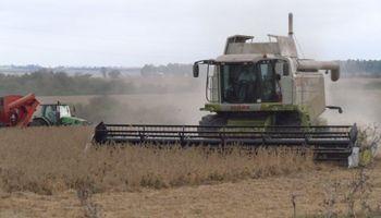 ¿Vicentin constituye un primer pie sobre el sistema agroindustrial?