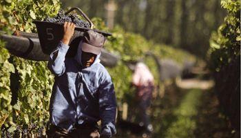 Lanzan un programa que conecta trabajadores rurales desempleados con empleadores