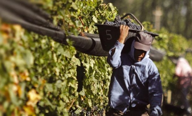 El sector vitivinícola, es una de las economías regionales de la zona Cuyo.