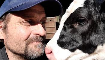 Tambo: el Gobierno no acompaña, pero se adjudica los números positivos de la lechería