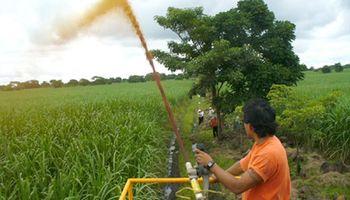 Vinaza: una alternativa para mejorar los suelos productivos