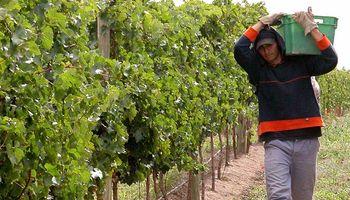 Economías regionales no pueden pagar los sueldos a los trabajadores temporales