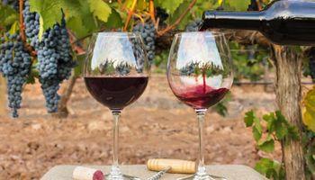 """Alertan por un sobrestock de vino: """"La situación general de la vitivinicultura no es la deseable"""""""
