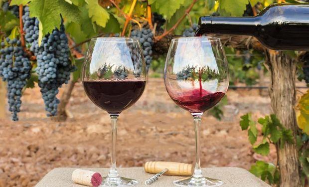 La industria vitivinícola perdió US$ 3000 millones en los últimos ocho años por la carga impositiva.