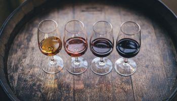La bebida nacional está de festejo: en 2020 Argentina vendió 90 millones de litros más de vino al mundo