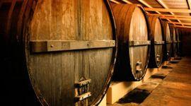 Argentina logró exportar el mayor volumen de vino de los últimos 12 años