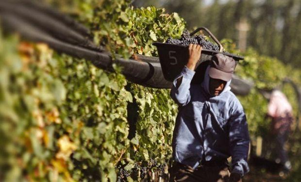 La mesa vitivinícola se reunió con el ministro de agroindustria, Etchevehere.